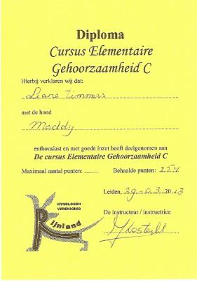 313sized_diploma EG C Maddy