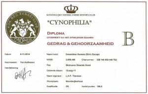 1114sized_GG B diploma Maddy0001